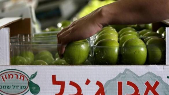 Photo of فلسطين ترحب بتمييز منتجات المستوطنات
