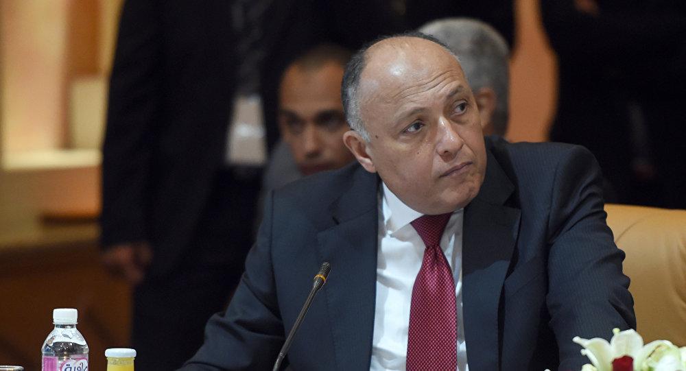 Photo of الجمالي يلتقي شكري.. ويعرض خطته في ليبيا للجامعة العربية