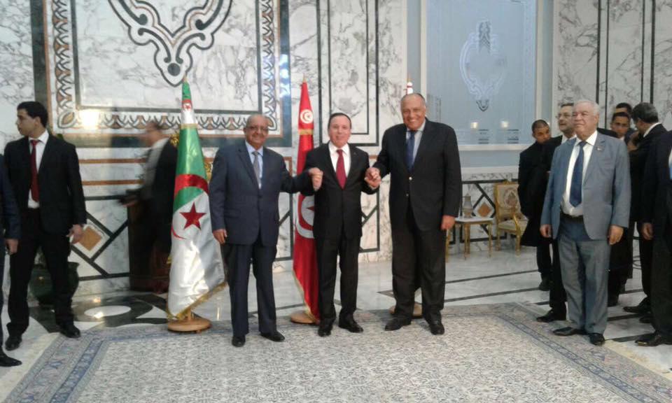 Photo of شكري: الحل في ليبيا سياسي فقط.. ونرفض التدخل الخارجي