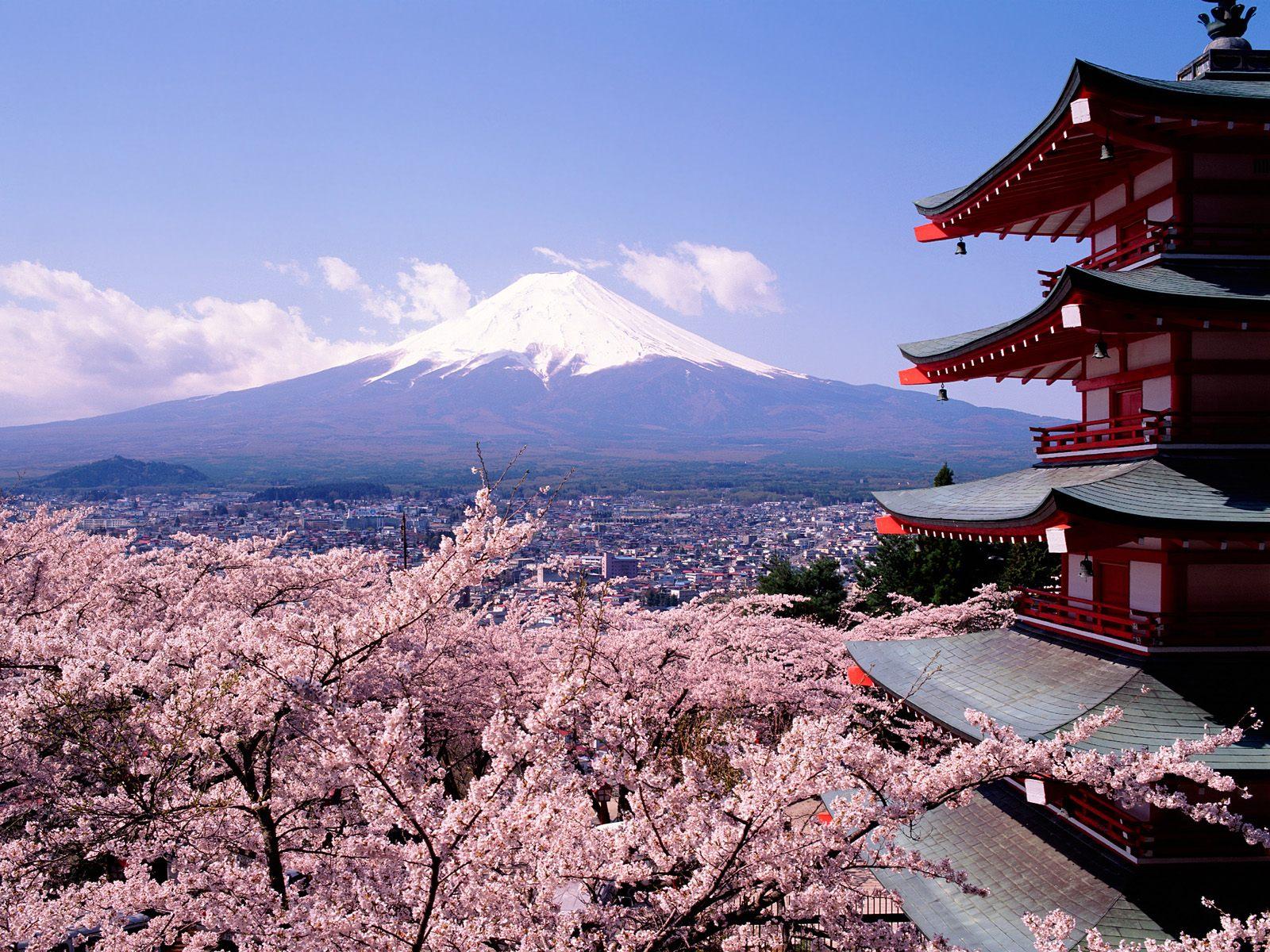 "Photo of إياك وهذا ""الفعل الخطير"" إذا زرت اليابان. اقرأ"
