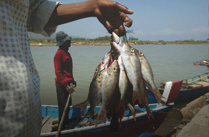 صيد السمك - ليبيا