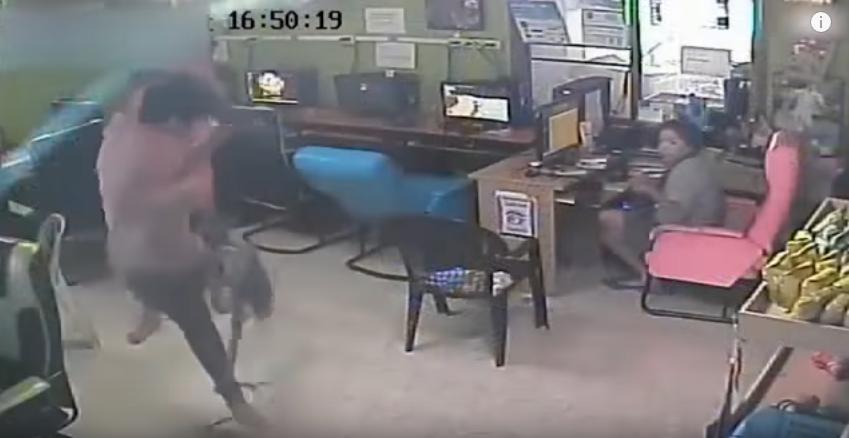 """Photo of """"أفعى طائرة"""" تهاجم رجلا في مقهى وتُثير الرعب"""