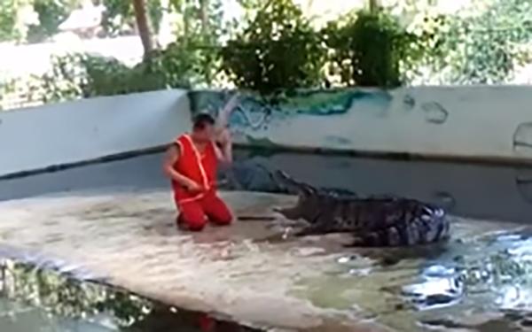 رجل ينجو بأعجوبة من عضة تمساح