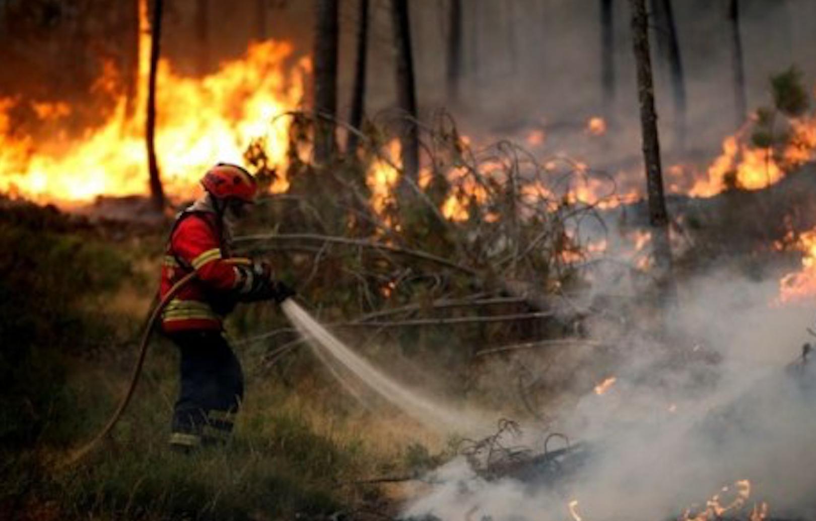 Photo of البرتغال تطلب مساعدة أوروبا لمكافحة الحرائق