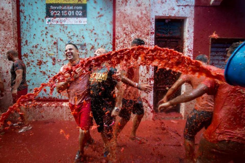 حرب الطماطم