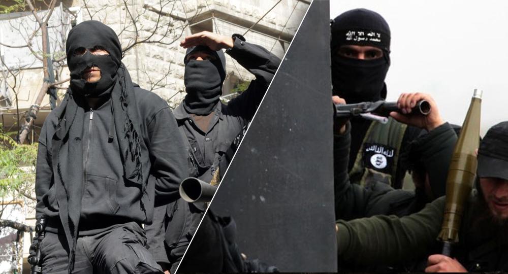 داعش وتنظيم القاعدة