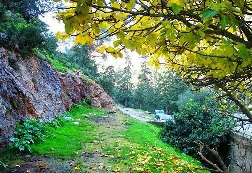 صورة من الجبل الأخضر