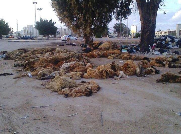 """Photo of حول أيام عيد الأضحى في ليبيا: أزمة """"الجلود"""".. (4)"""