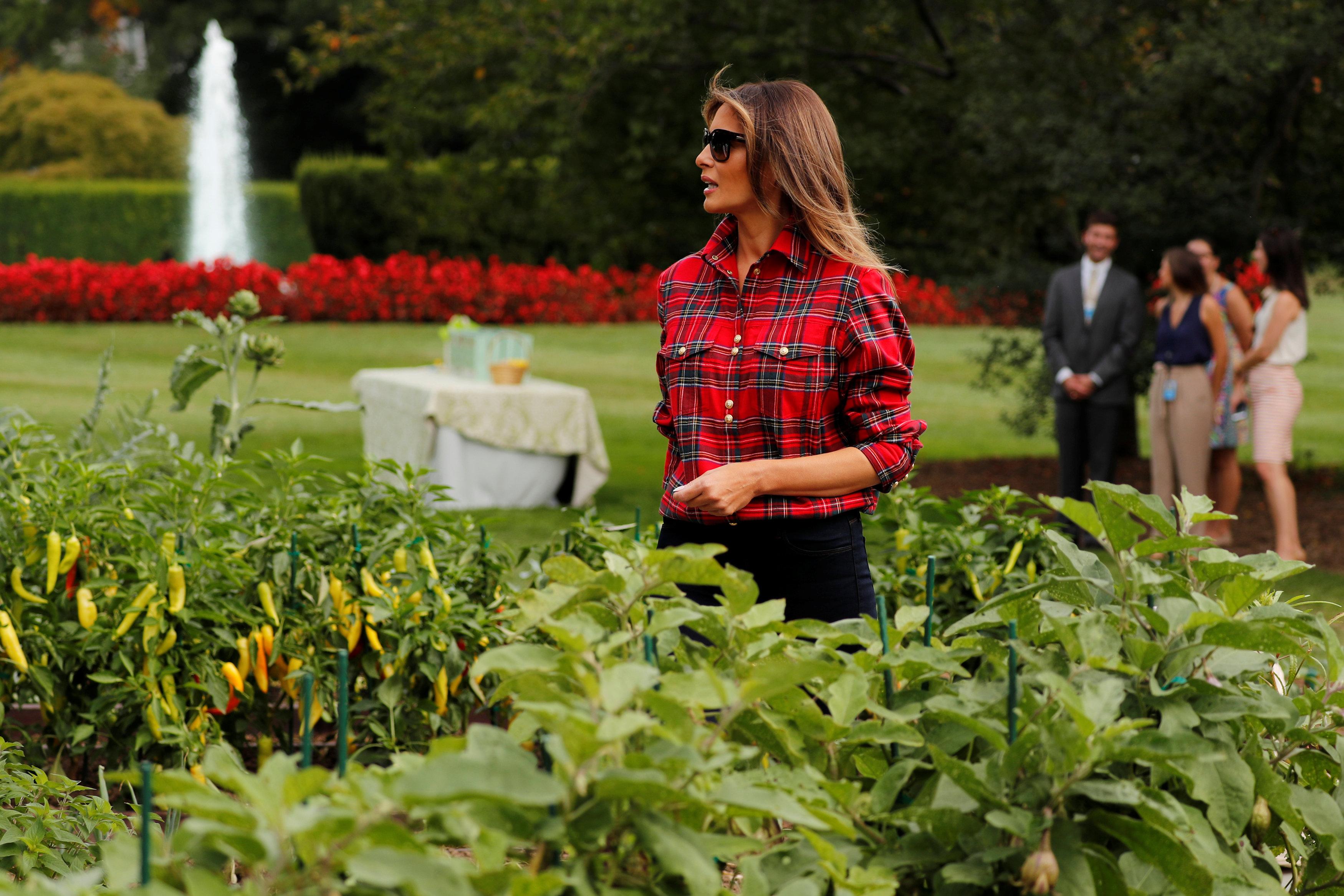 Photo of ميلانيا ترامب تشارك في زراعة حديقة البيت الأبيض (صور)