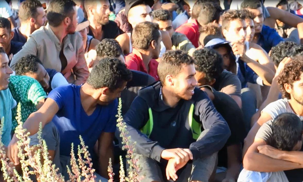 موجة مهاجرين