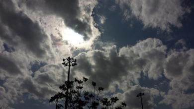 نشرة الأحوال الجوية