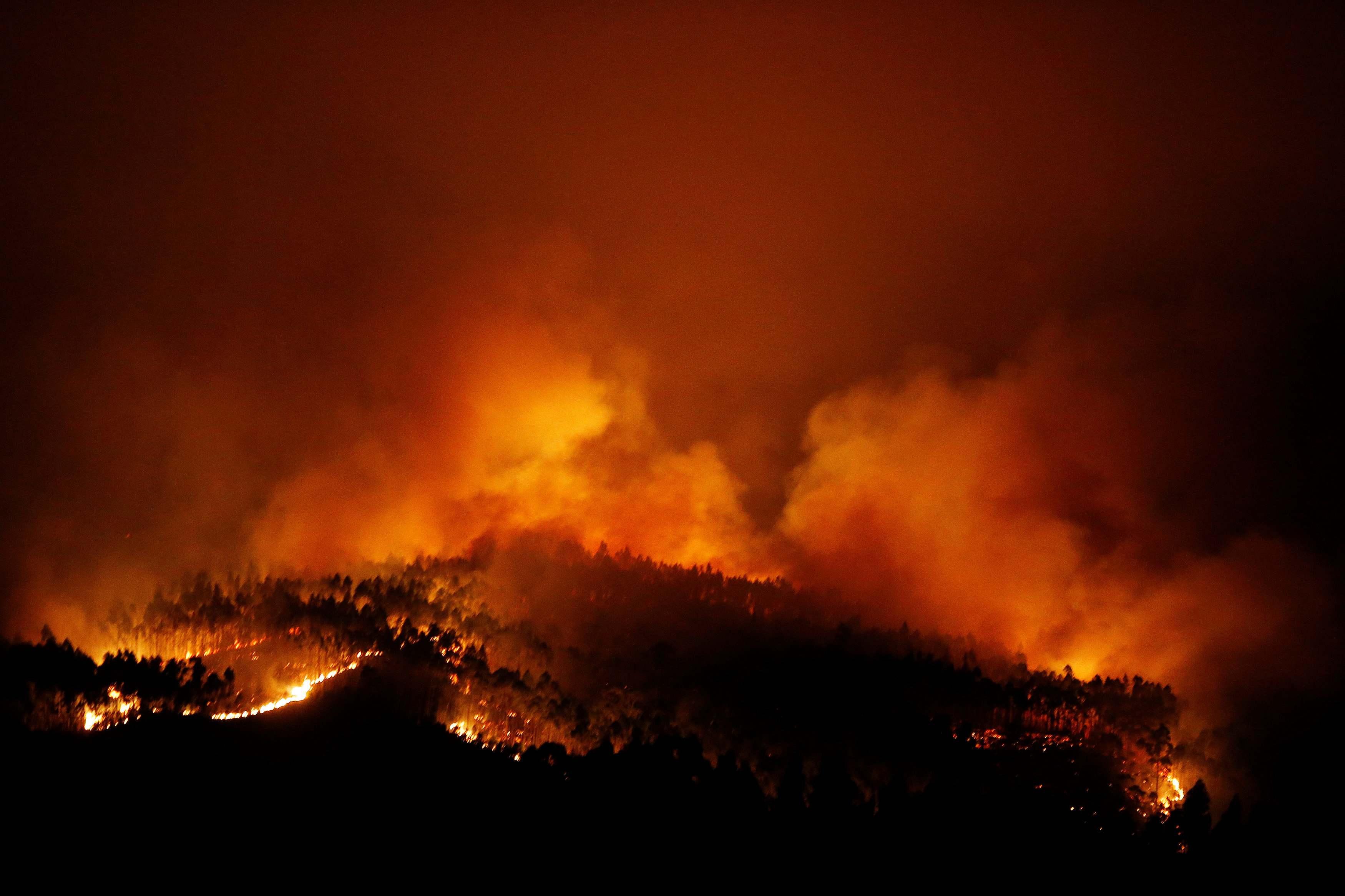 حرائق الغابات في لشبونة