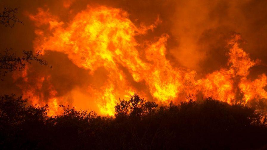 """Photo of """"نيران ضخمة"""" تُرعب آلاف السكان شمال كاليفورنيا"""