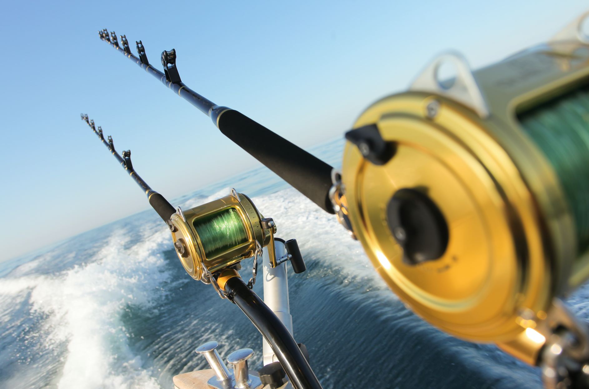 صورة نشرة الصيد البحري المتوقعة في ليبيا