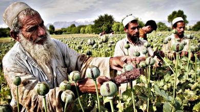 مزارعون أفغان