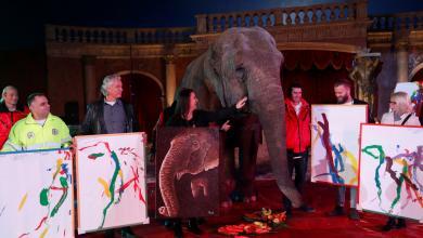 """Photo of بيع لوحات أنثى فيل """"رسّامة"""" في مزاد"""