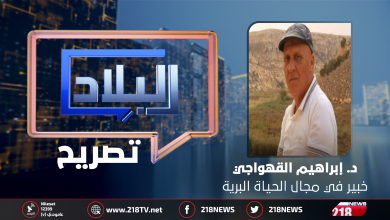 "Photo of القهواجي لـ218 نيوز: ""جريمة"" ترتكب بالحياة البرية في ليبيا"