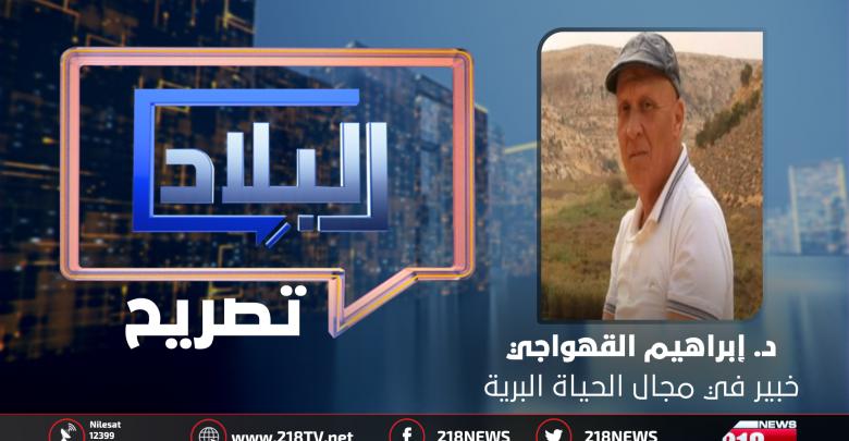 د. إبراهيم القهواجي