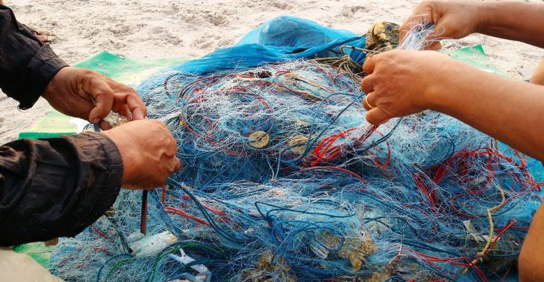 نشرة الصيد البحري