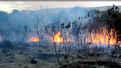 Photo of اندلاع النيران بأحد مقابر درنة