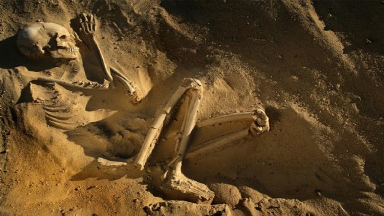 اقدم حفريات الإنسان