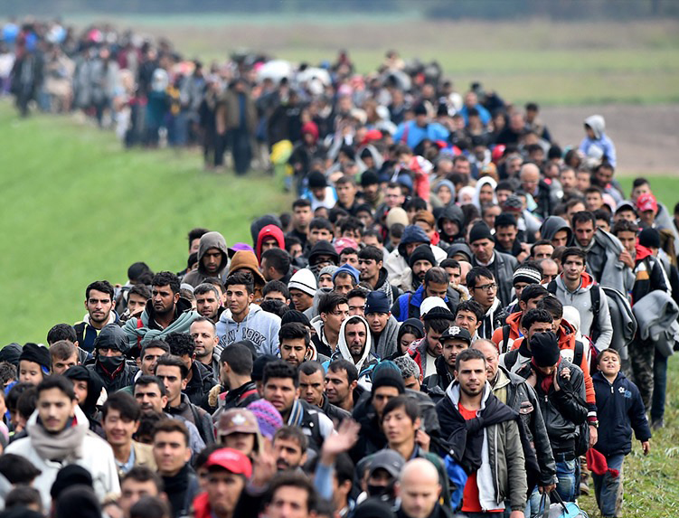 لاجئين - ألمانيا