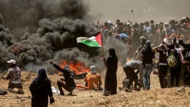Photo of العنف الإسرائيلي على طاولة حقوق الإنسان