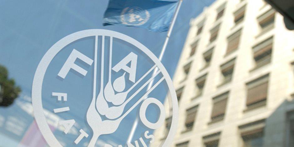 """منظمة الأغذية والزراعة التابعة للأمم المتحدة """"فاو"""" ا"""