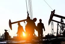 الإنتاج النفطي اليومي