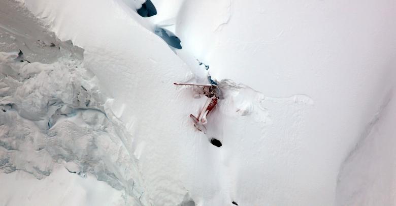 الطائرة السياحية التي سُرقت من قبل أحد موظفي شركة الطيران ألاسكا إير