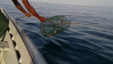 Photo of أطماع أوروبية بثروة ليبيا السمكية المُهملة