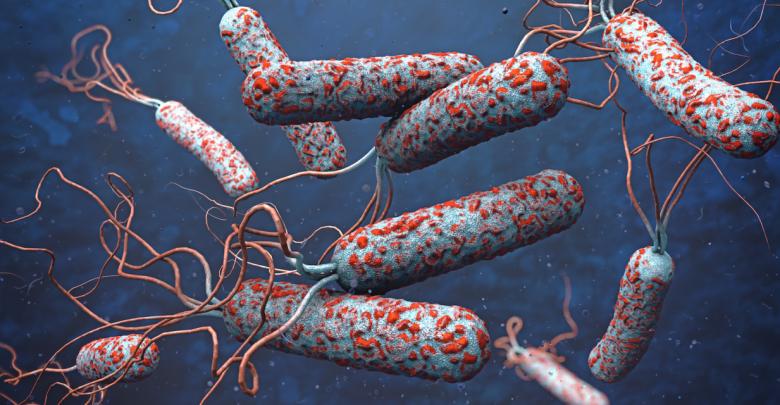 بكتيريا الكوليرا - تعبيرية