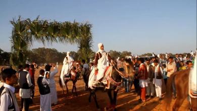 مهرجان الفروسية الشعبية - سرت