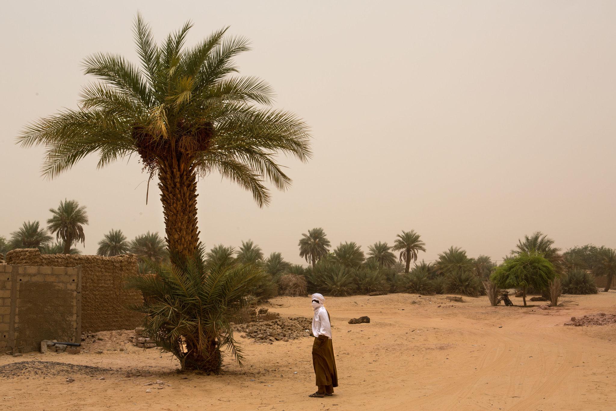 صحراء أوباري