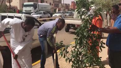 Photo of منظمة السلام أوباري تطلق حملة لغرس الأشجار بالمدينة