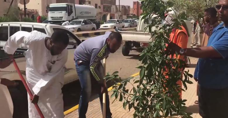 منظمة السلام أوباري تطلق حملة لغرس الأشجار بالمدينة