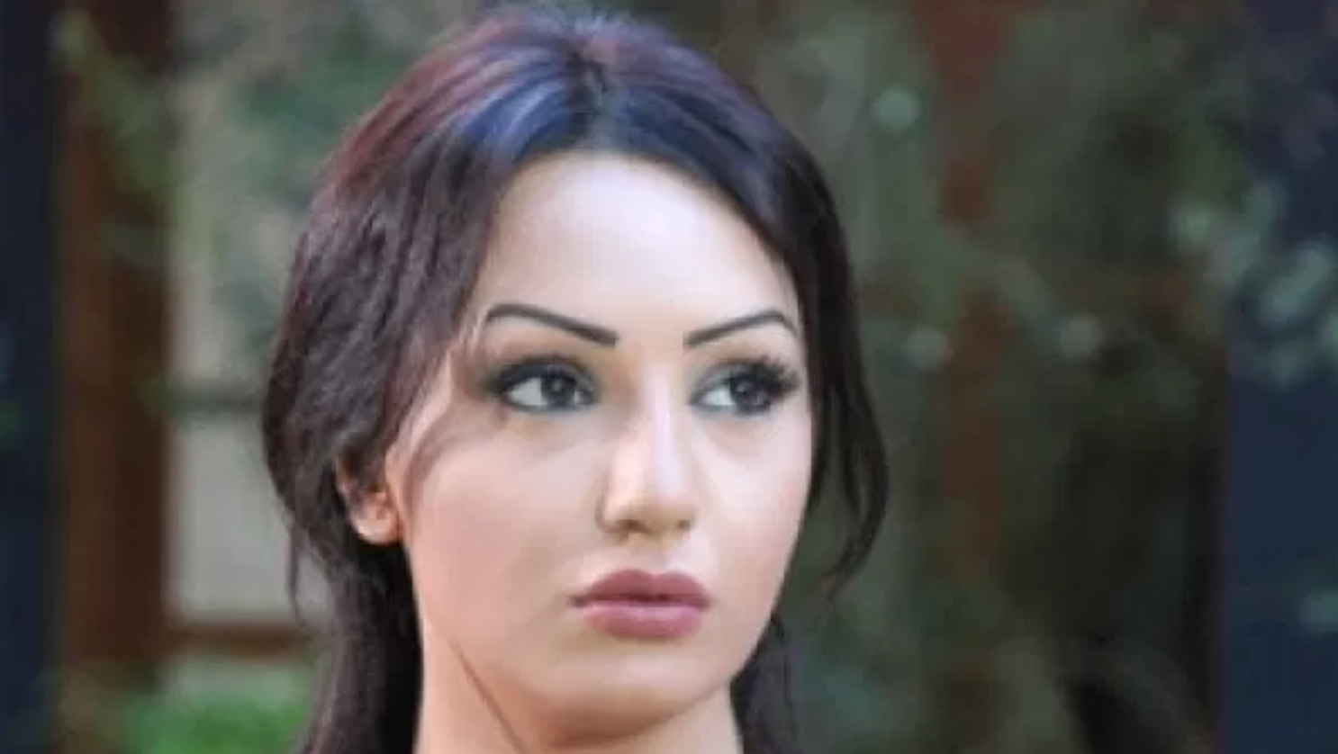 الفنانة السورية المحبوبة دينا هارون