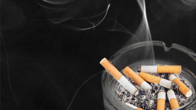 Photo of خبر غير سار لمصانع إنتاج السجائر