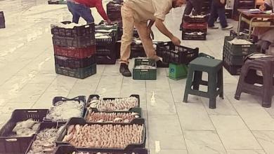 """صورة أسعار """"الحوت"""" اليوم من سوق باب البحر"""