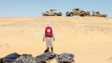 Photo of 6600 مهاجرا فقدوا حياتهم في الصحراء