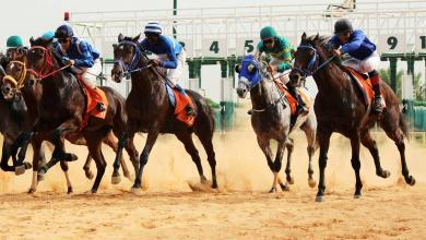 Photo of اختتام بطولة الديربي الليبي للخيول