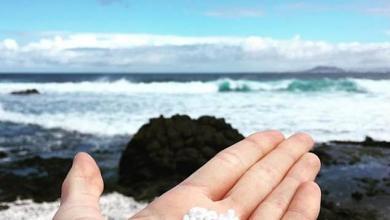 """صورة شاطئ """"الفشار"""".. عندما تتحول رمال الكناري إلى """"بوب كورن""""!"""
