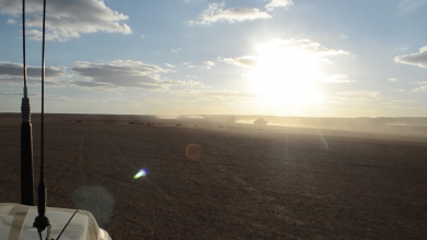 Photo of سرية مرادة تجوب الصحراء لفرض الأمن
