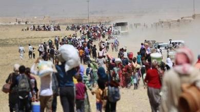 Photo of إحصائية صادمة لأعداد النازحين في العراق