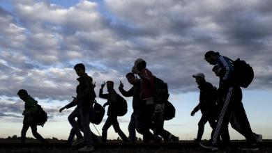الهجرة غير الشرعية