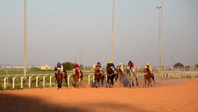 Photo of مدرسة الفروسية بسيدي سليم تحتضن سباق الحلبة