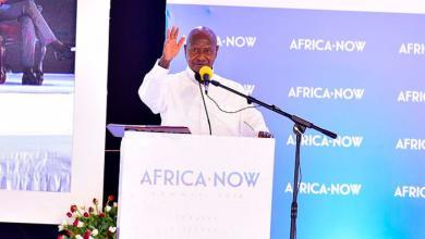 مؤتمر أفريقيا الآن