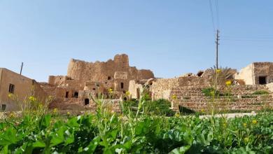 Photo of ربيعٌ يُطوِّقُ قصر كاباو