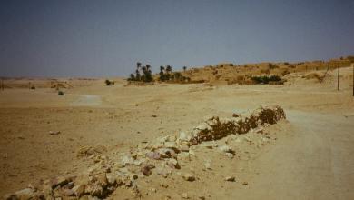 Photo of داعش يقترف مذبحة أخرى في الفقهاء