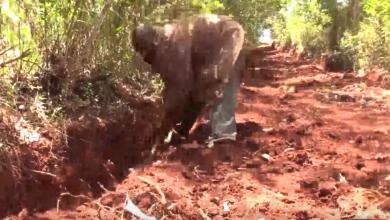 Photo of كيني يحفر طريقا عريضا بأدوات زراعية